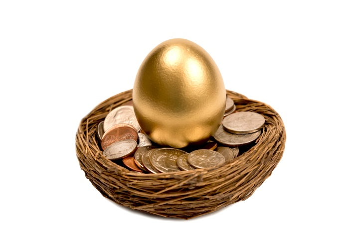 golden egg in a nest of money